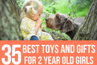 35 Best Toys & Gift Ideas for 2 Year Old Girls 2021