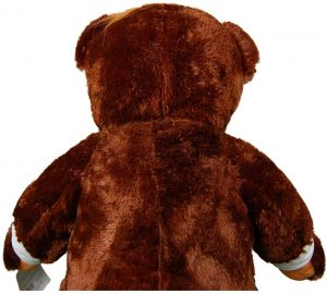 This is an image of the back of trumpy bear