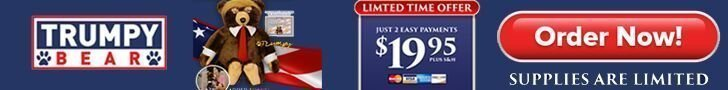 This is a banner ad for the trumpy bear